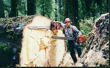 Tom Sansom With Saws
