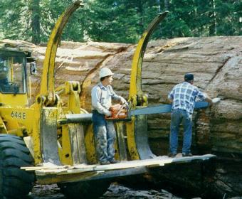 Working From a Log Loader